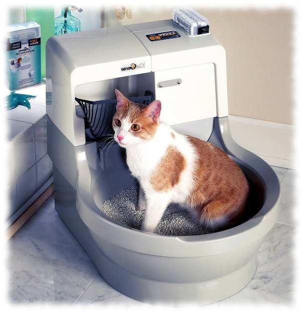 виды биотуалетов для кошек